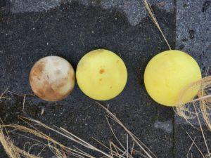 SCOPE工法のPCボール